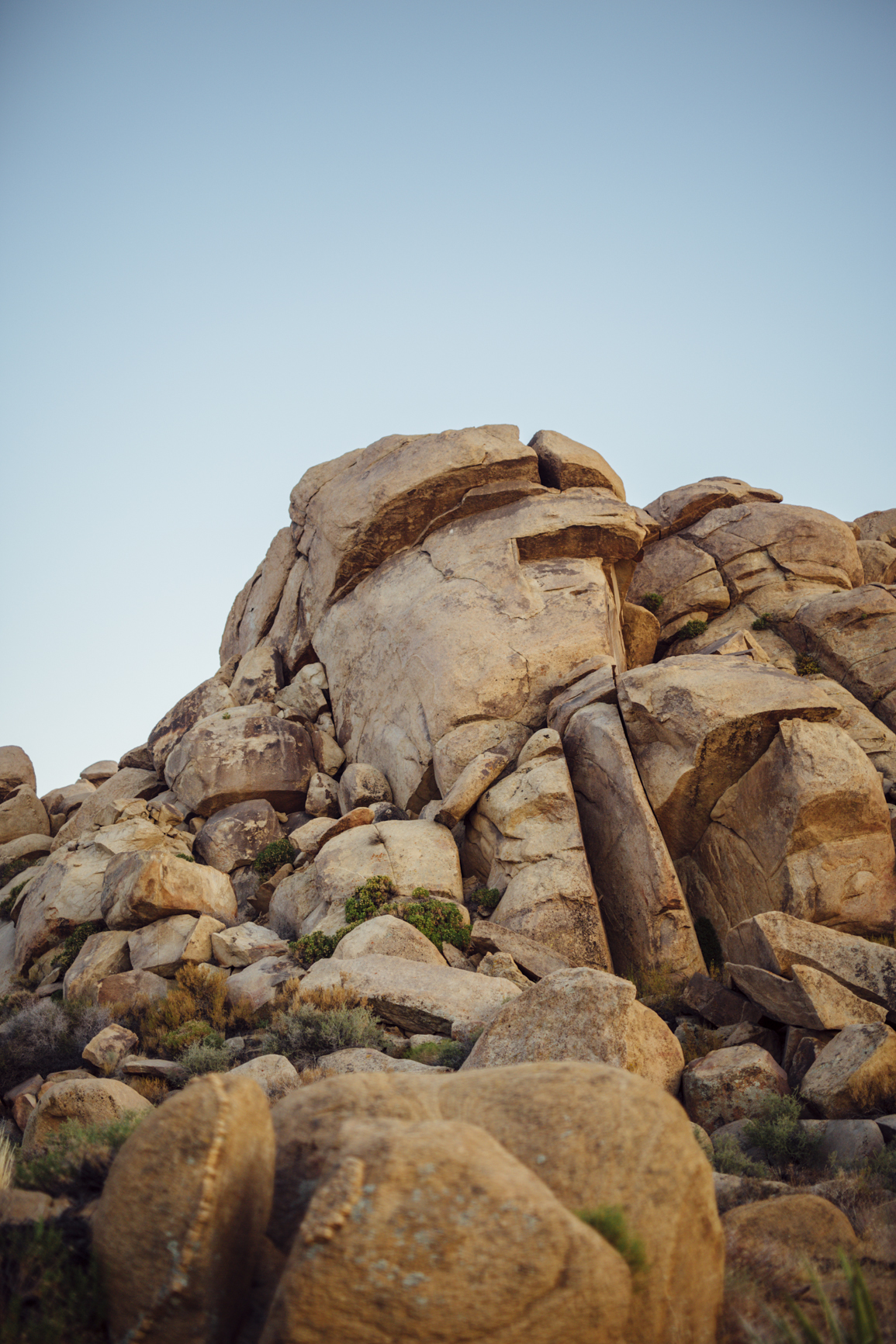 Joshua_Tree_Engagement_Couple_Wedding_California_Photography_Artur_Zaitsev-47